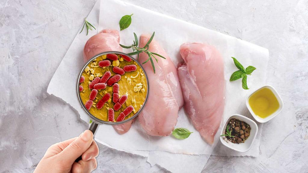 chicken-bacteria-food-safety-hazards